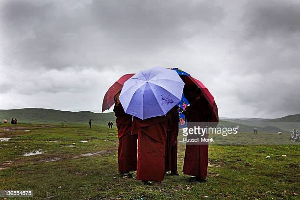 Buddhist nuns chatting under umbrellas