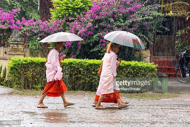 Buddhist nuns walking under the rain