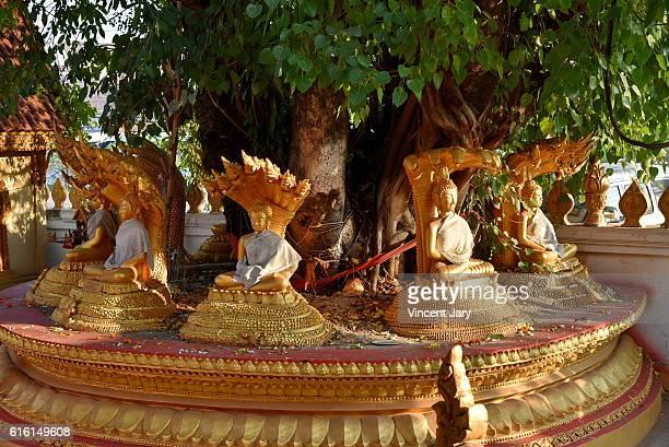 Buddhist spirtual scenery Laos