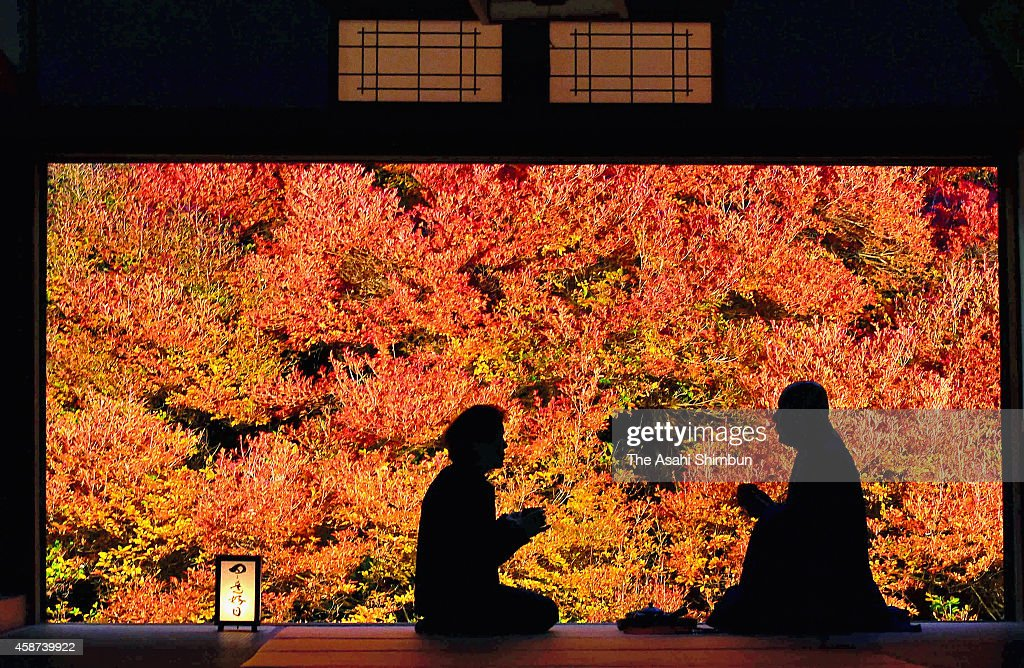 A Buddist monk and a guest talk in a room at Ankokuji Temple on November 10, 2014 in Toyooka, Hyogo, Japan. A 160-year-old Enkianthus perulatus in the garden is in autumn colour.
