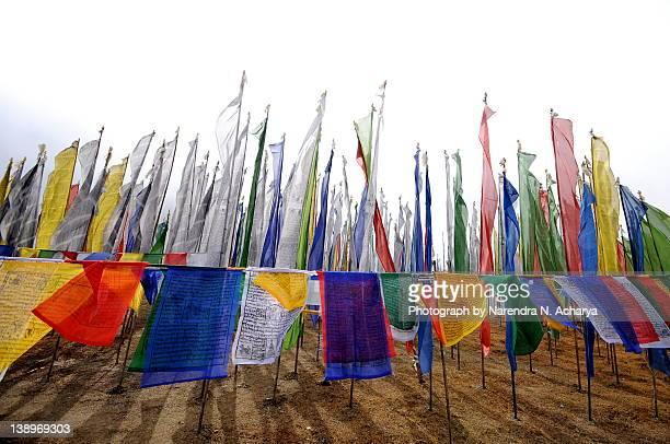 Buddist pray flags at 8500 feet