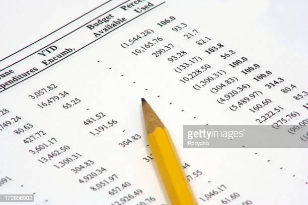 Budget Spreadsheet