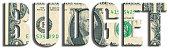 Budget. US Dollar texture.