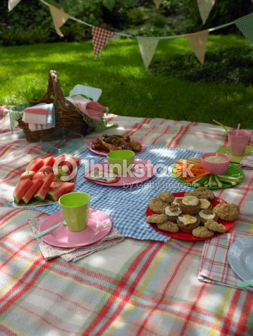 Buffet food laid out on picnic blanket outdoors stock for Picnic food ideas for large groups
