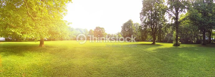 Building land for new construction project on green meadow, plot for construction area : Stock Photo