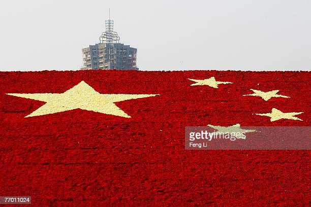 A building sits in the distance from the national flag made up of 100000 carnations at Wuling Square September 25 2007 in Hangzhou China China is...