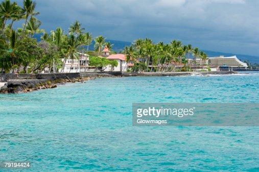 Buildings and trees at the seaside, Kona, Big Island, Hawaii Islands, USA