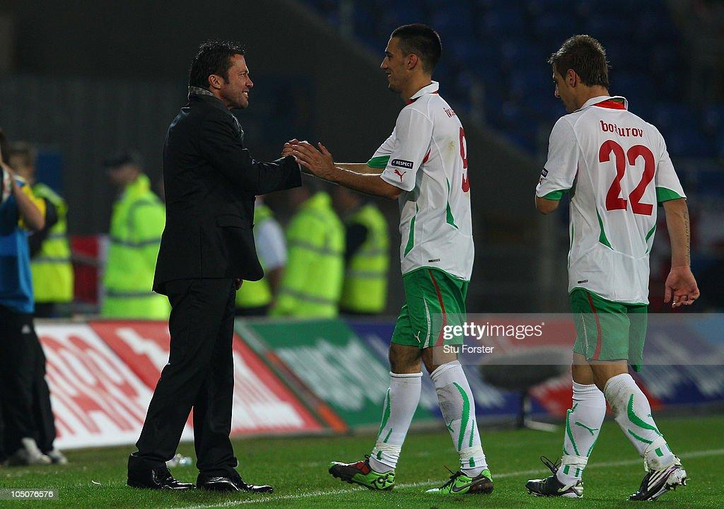 Wales v Bulgaria - EURO 2012 Qualifier