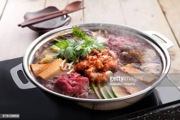 Bulgogi (Beef meat) and Octopus hotpot