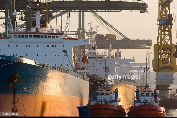 Bulk carriers in sunlight