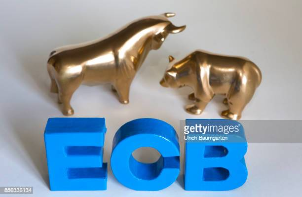 Bull and bear symbol for the ups and downs at the stock markets of the world The photo shows bull and bear with the letters ECB