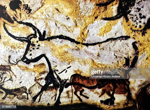 Bull and Cattle Detail of a cave painting FrancoCantabrian Upper Palaeolithic period00010000 BC Left wall of the rotunda in the cave at Lascaux...
