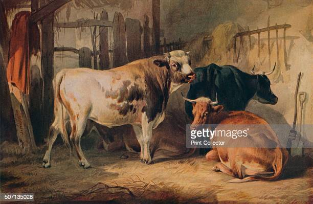 A Bull and three Cows in a Stable' c1856 From A Catalogue of the Pictures and Drawings in the collection of Frederick John Nettleford Volume I by C...