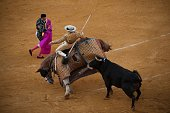 TOPSHOT A bull attacks the picador's horse to knock it down during the Corpus bullfight festival at the bullring of Granada on May 25 2016 / AFP /...