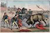 Bull Charging a Picador engraving from 'Usi e Costumi di Tutti i Popoli dell'Universo Ovvero Storia del governo delle leggi della milizia della...