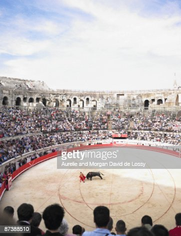 bull fight in arena : Stock Photo