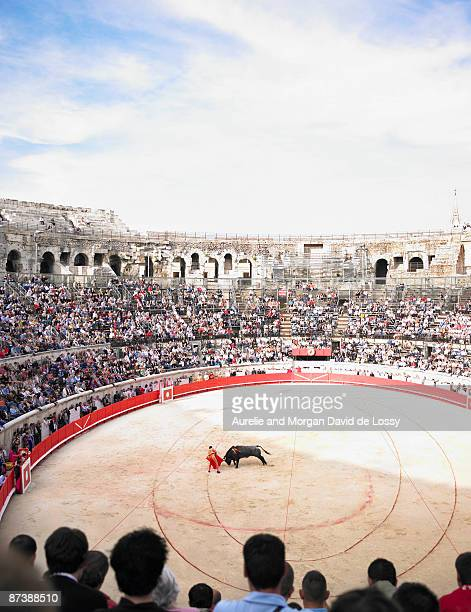 bull fight in arena