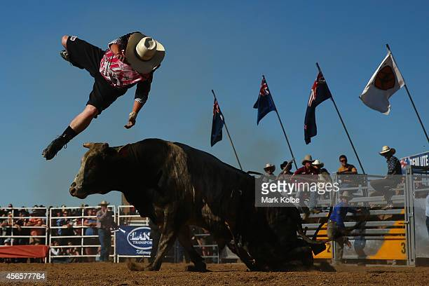 A bull fighter is thrown in the air by a bull during the Bull Ride Spectacular on the first day of the 2014 Deni Ute Muster at the Play on the Plains...