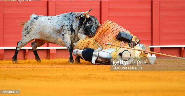 A bull hits a 'picador' and his horse lying on the ground during a bullfight at the Maestranza bullring in Sevilla on May 5 2017 / AFP PHOTO /...