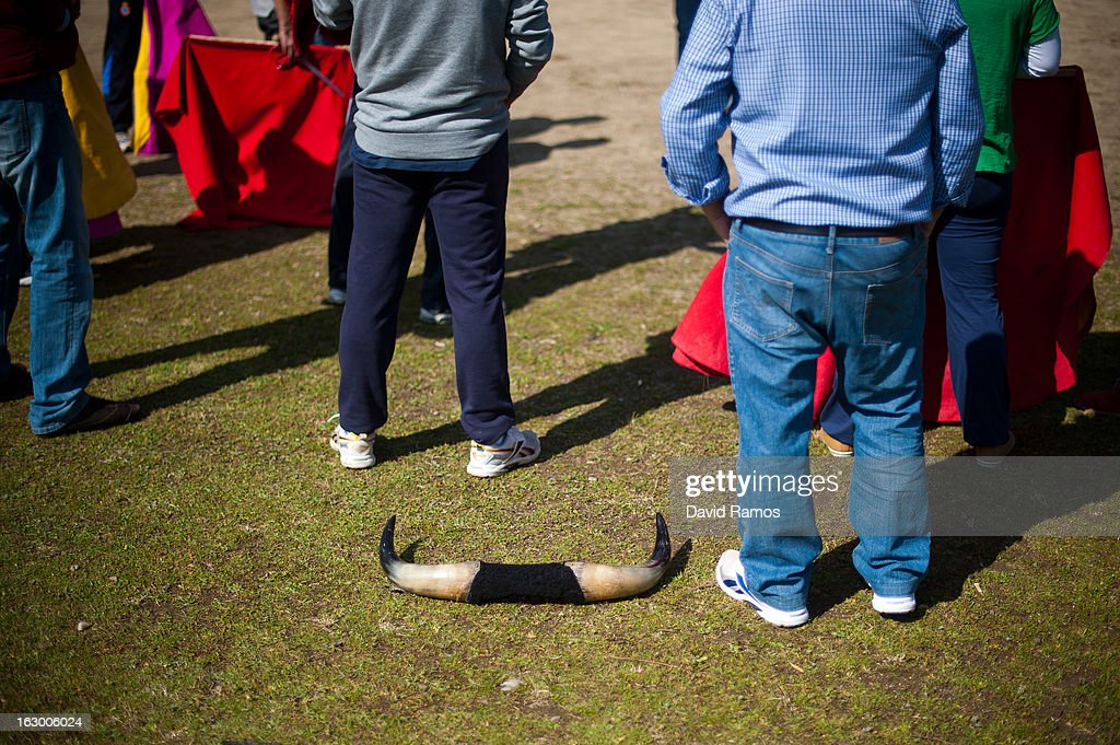 bull horns lies on the grass as enthusiasts listen instructions as they practice bullfighting in a city park in Santa Perpetua de la Mogoda on March 3, 2013 in Barcelona, Spain. On February 12 the Spanish Parliament accepted a petition from bullfight supporters asking for the sport to become a key part of the Spain's cultural heritage. The petition, of 590,000 signatures, has been promoted by the Federation of Bullfighting Entities of Catalonia. The last bullfight in Catalonia was held in September 25, 2011.