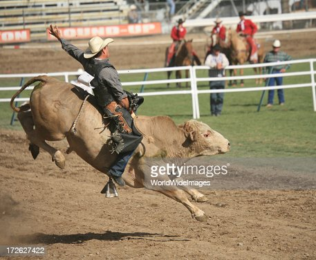 Bull rider at rodeo mid-air on dirt track