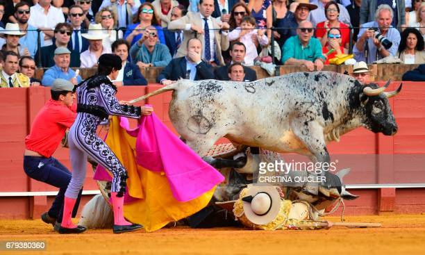 A bull steps over a 'picador' and his horse lying on the ground during a bullfight at the Maestranza bullring in Sevilla on May 5 2017 / AFP PHOTO /...