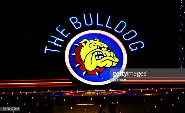 Bulldog cafe Amsterdam Holland