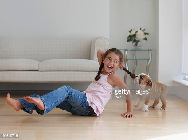 Bulldog Puppy Pulling On Girl's Braid