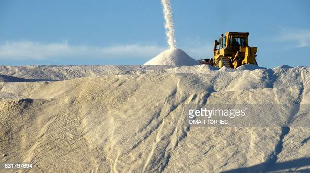A bulldozer stands by as an industrial conveyer belt dumps salt collected from dried ponds onto a huge pile at the Exportadora de Sal company plant...