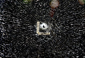 A bullet hole is seen in a window of the Fitness Express Gym on Airline Hwy where three police officers were shot and killed in an ambush on July 18...