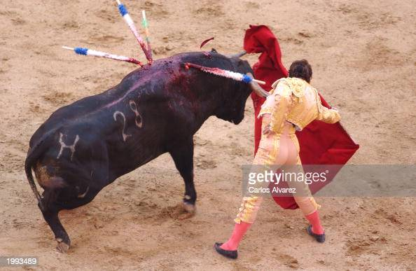 ... bloody bull is better than a bloody mary food food bloody bull bymajed