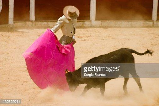 Bullfighter in action