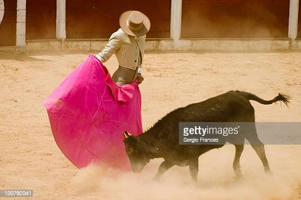 Bullfighter in action