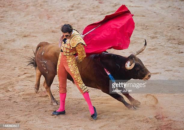 Bullfighter Juan Jose Padilla of Spain performs with a TorrehandillaTorreherberos fighting bull on the eight day of the San Fermin runningofthebulls...