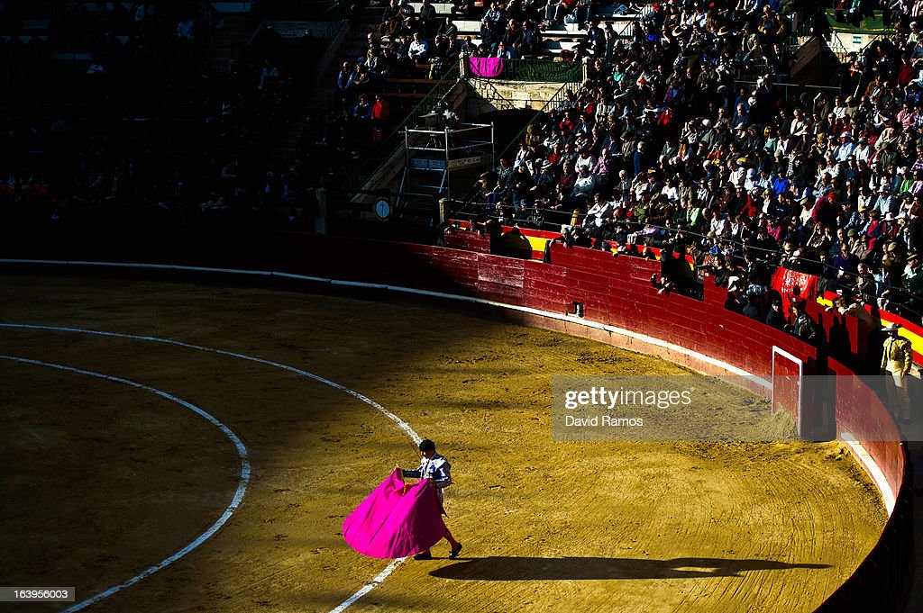 A bullfighter performs during a bullfight as part of the Las Fallas Festival on March 18, 2013 in Valencia, Spain. The Fallas festival, which runs from March 15 until March 19, celebrates the arrival of spring with fireworks, fiestas and bonfires made from large Ninots (puppets).