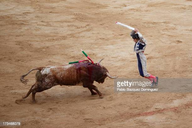 A bullfighter performs with Miura's fighting bulls at the bullring on the ninth day of the San Fermin Running Of The Bulls festival on July 14 2013...