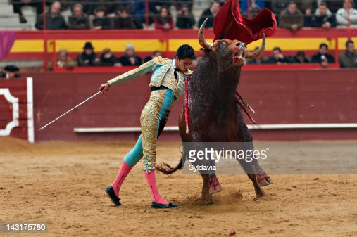 Bullfighter : Photo