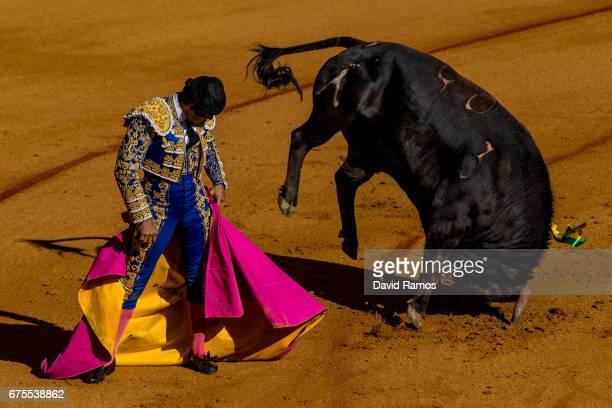 Bullfighter Rivera Ordonez 'Paquirri' performs with a Daniel Ruiz ranch fighting bull at La Maestranza bullring on the second day of La feria de...