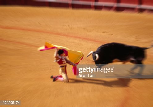 Bullfighting in ring : Stock Photo