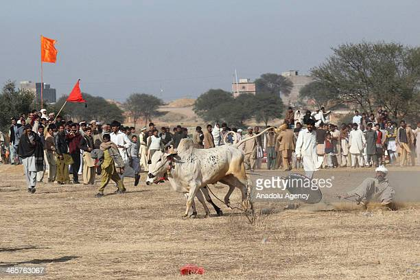 Pakistan Derby Race Stock Photos And Pictures Getty Images