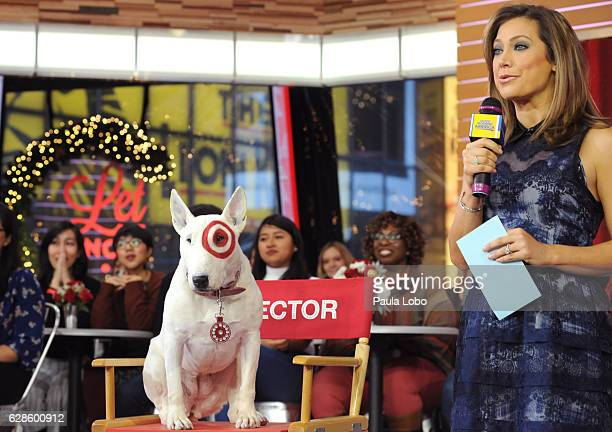 AMERICA BullsEye the Target Dog is a guest on 'Good Morning America' Wednesday December 7 airing on the ABC Television Network BULLSEYE GINGER ZEE