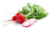 bunch fresh radish with cut