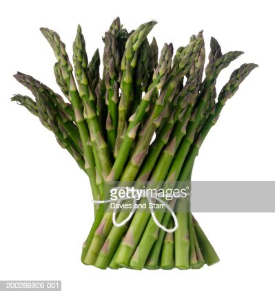 Bunch of asparagus : Photo