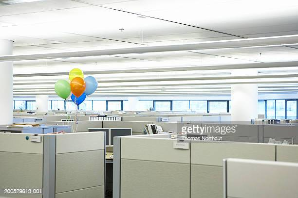 Bunch of balloons amidst cubicles in office
