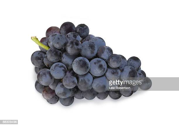 Bunch of Cabernet grapes