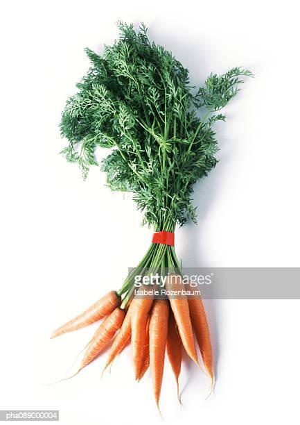 Bunch of carrots, full length