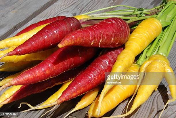 Tas de carottes-bordeaux et jaune