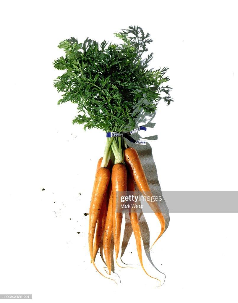 Bunch of carrots, studio shot : Stock Photo