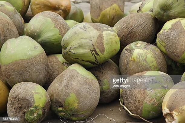 A bunch of coconuts