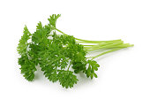 Curly leaf parsley isolated on white background